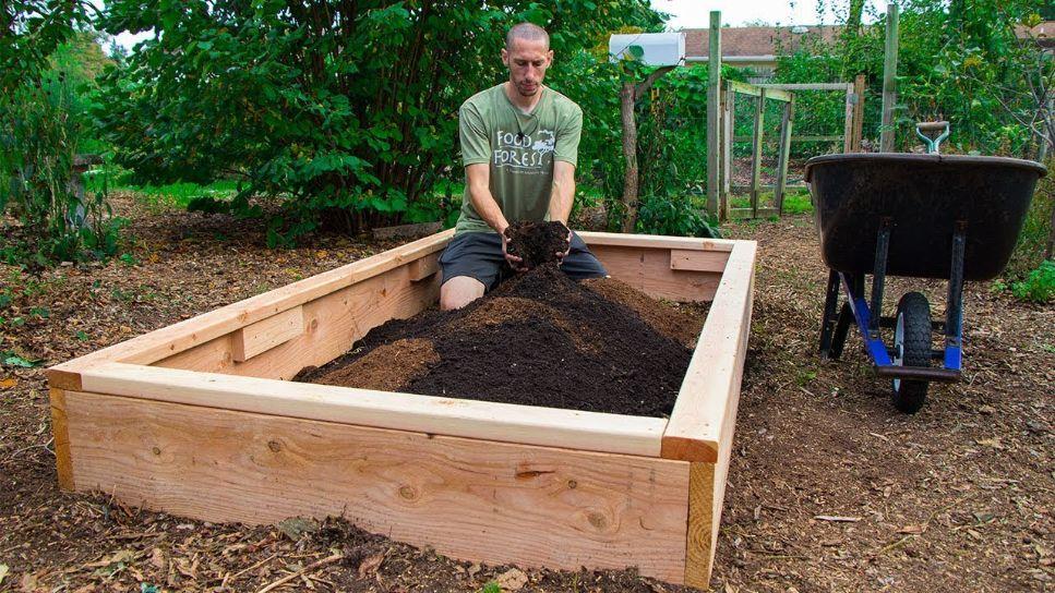 Raised Bed for Easy Backyard Gardening